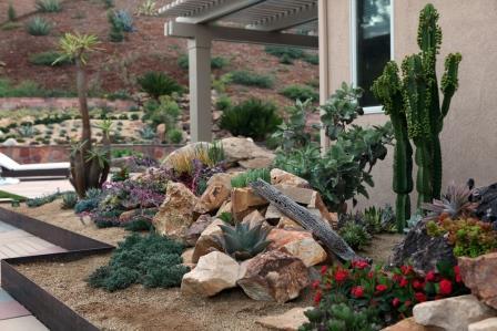 Attirant Water Wise Gardening Pt.2